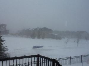 Alberta blizzard
