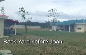 Back yard before Joan