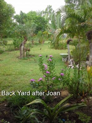 Back yard after Joan