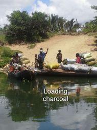 Loading charcoal